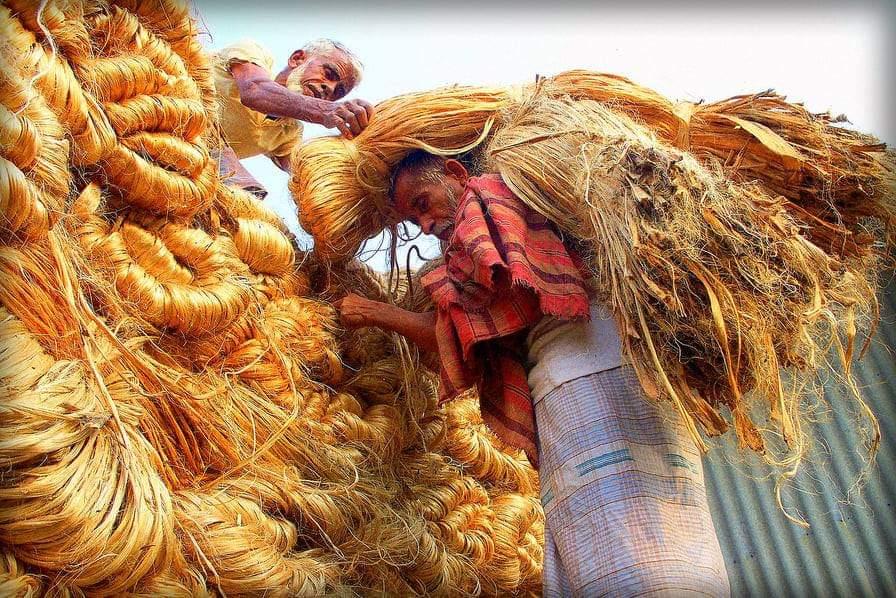 সোনালি আশঁ উন্নয়নে আসছে ১০ হাজার কোটি টাকার তহবিল